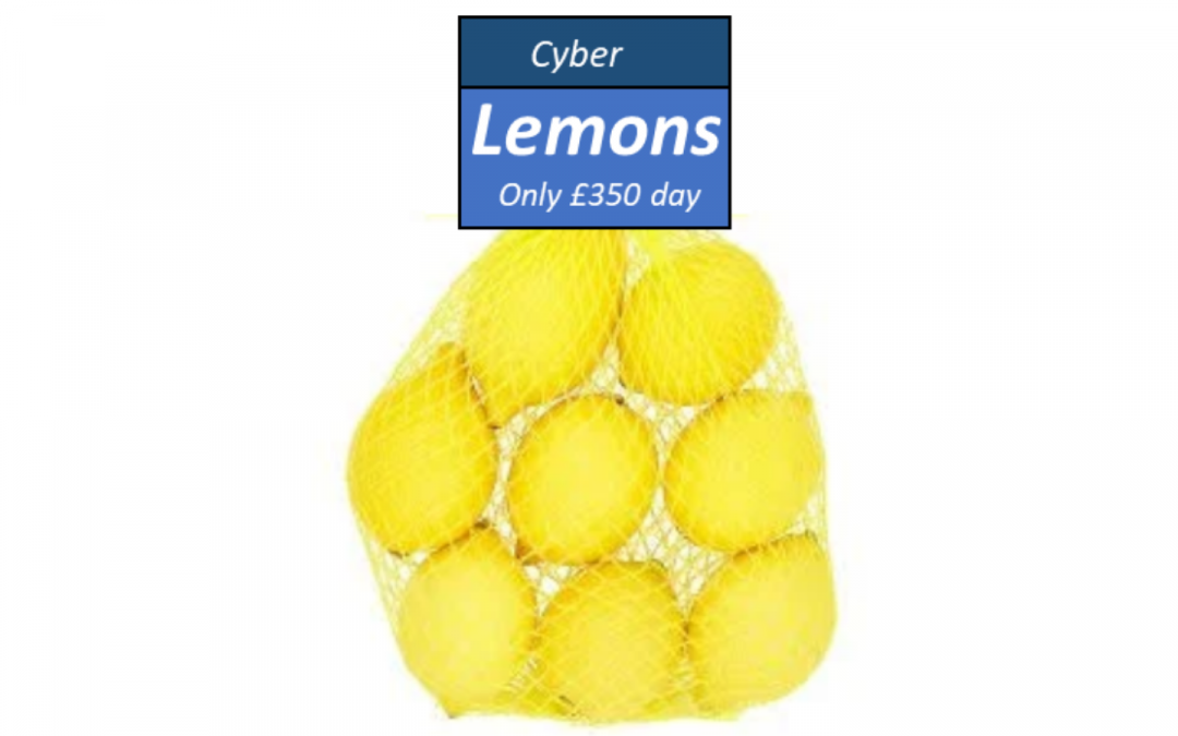 Cyber Security Professionals – A Market for Lemons?